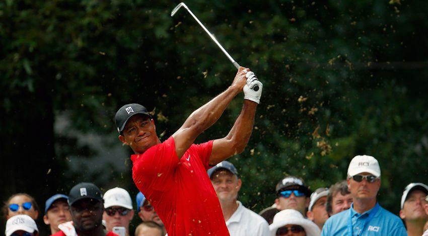 Tiger in full swing